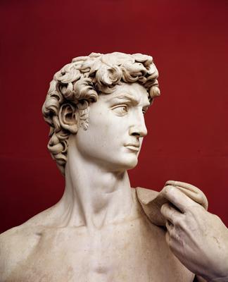 David, 1501-04 (marble) (detail of 4344),