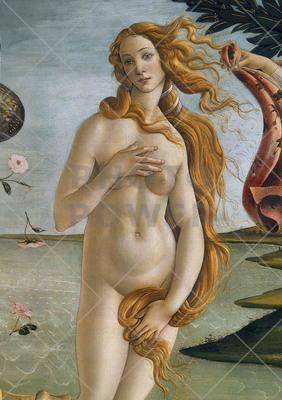 Birth of Venus ; Painting,