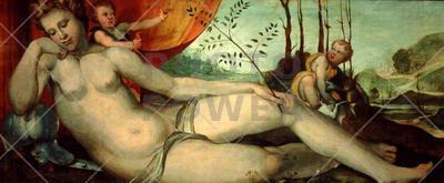 Sleeping Venus with Cupids ; Painting,